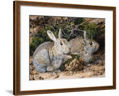 Two Rabbits-John Sherrin-Framed Giclee Print
