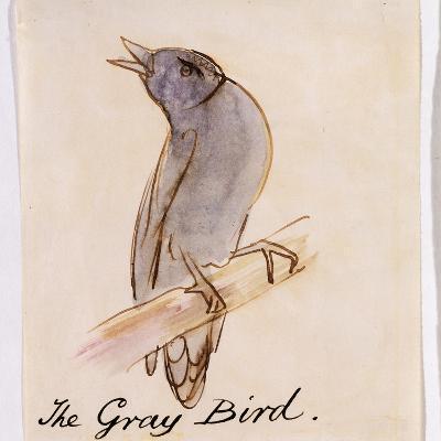 The Gray Bird-Edward Lear-Giclee Print