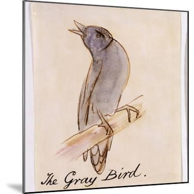The Gray Bird-Edward Lear-Mounted Giclee Print