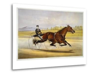 Queen of the Turf, 'Maud S', Driven by W.W. Bair, Lithograph-Nicholas Winfield Leighton-Metal Print