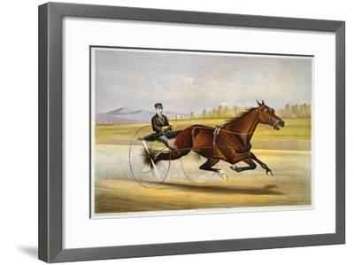 Queen of the Turf, 'Maud S', Driven by W.W. Bair, Lithograph-Nicholas Winfield Leighton-Framed Giclee Print