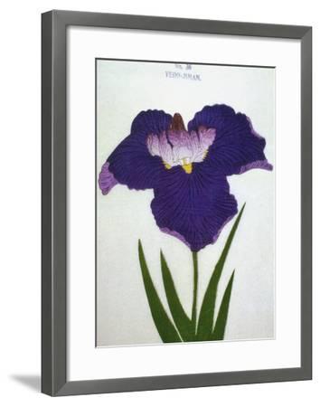 Yedo-Jiman Book of a Purple Iris-Stapleton Collection-Framed Giclee Print