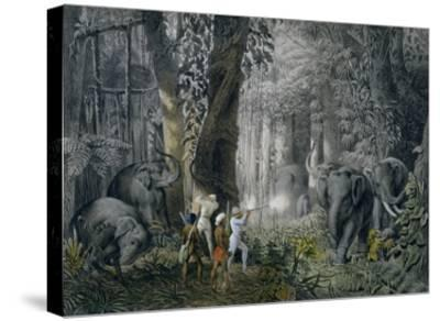 Lithograph of an Elephant Hunt After Graf Andrasy-Stapleton Collection-Stretched Canvas Print