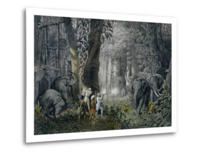 Lithograph of an Elephant Hunt After Graf Andrasy-Stapleton Collection-Metal Print
