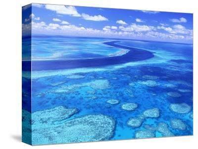 Australia's Great Barrier Reef-Theo Allofs-Stretched Canvas Print