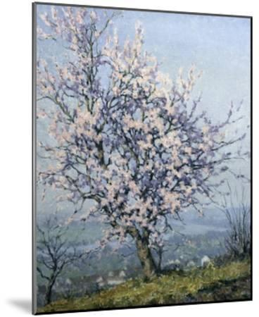 Spring-Emanuel Phillips Fox-Mounted Giclee Print