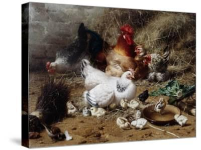 A Family of Chickens-Eugene Remy Maes-Stretched Canvas Print