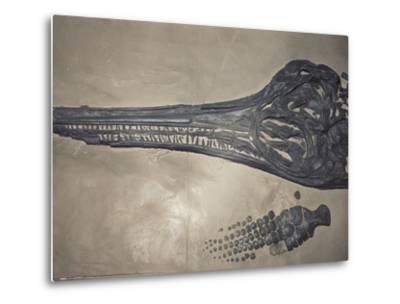 Head of a Jurassic Icthyosaur Fossil-Kevin Schafer-Metal Print