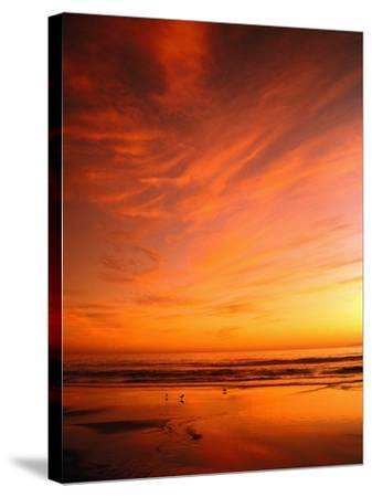 Southern California Sunset at Beach-Mick Roessler-Stretched Canvas Print