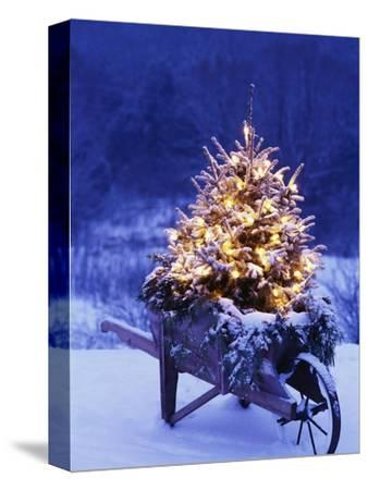 Lighted Christmas Tree in Wheelbarrow-Jim Craigmyle-Stretched Canvas Print