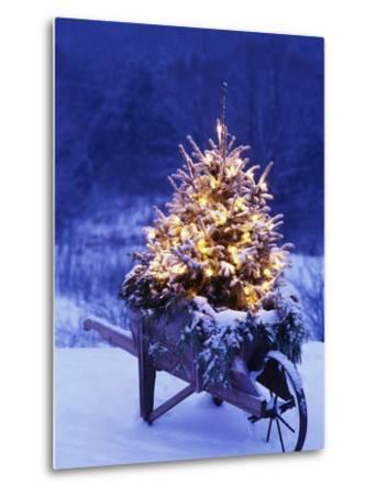 Lighted Christmas Tree in Wheelbarrow-Jim Craigmyle-Metal Print