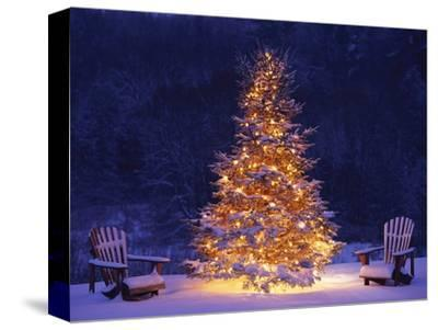 Snow Covering Adirondack Chairs by Lit Christmas Tree-Jim Craigmyle-Stretched Canvas Print