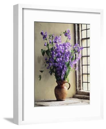 Canterbury Bells-Clay Perry-Framed Premium Photographic Print