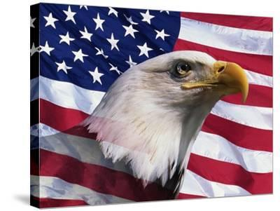 Bald Eagle and American Flag-Joseph Sohm-Stretched Canvas Print