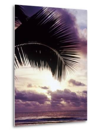 Sunset in Rarotonga-Craig Tuttle-Metal Print