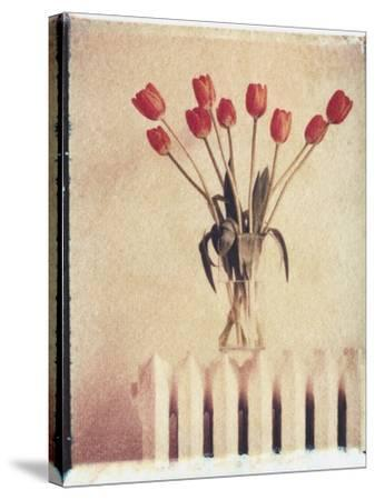 Vase of Tulips on a Radiator-Natalie Fobes-Stretched Canvas Print