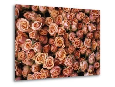 Pink Roses at Albert Kuyp Market-Owen Franken-Metal Print