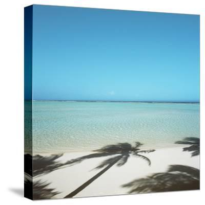 Shadows of Palm Trees on Beach--Stretched Canvas Print