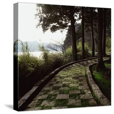 A Stone Footpath--Stretched Canvas Print