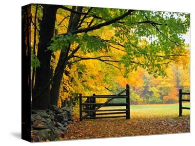 Fall Foliage Surrounds an Open Gate-Kathleen Brown-Stretched Canvas Print