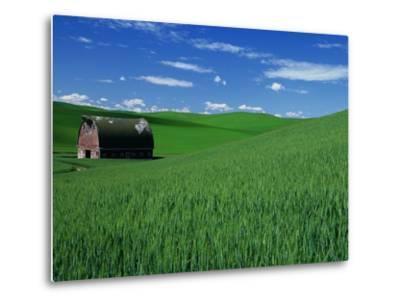 Red Barn in a Wheat Field-Darrell Gulin-Metal Print