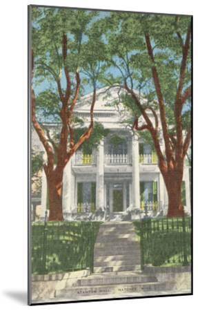 Stanton Hall, Natchez, Mississippi--Mounted Art Print