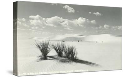 White Sands National Monument, New Mexico--Stretched Canvas Print