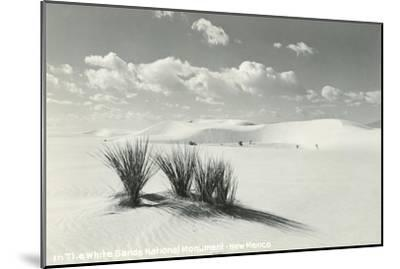 White Sands National Monument, New Mexico--Mounted Art Print