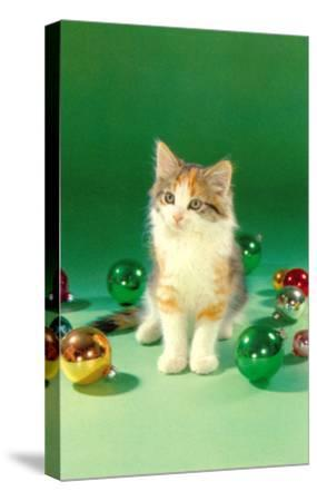 Kitten with Christmas Bulbs, Retro--Stretched Canvas Print