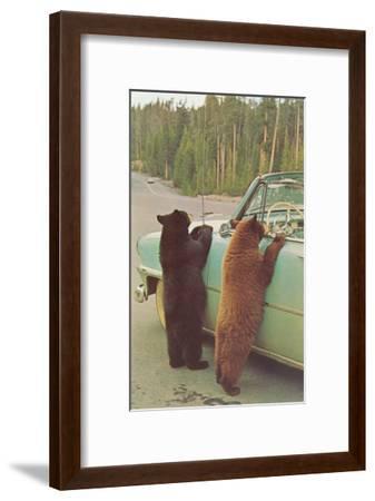 Bears Begging at Side of Car--Framed Art Print