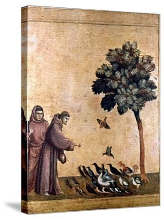 St. Francis Of Assisi--Stretched Canvas Print