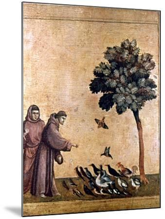 St. Francis Of Assisi--Mounted Giclee Print