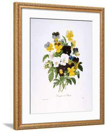 Redoute: Pansy, 1833-Pierre-Joseph Redout?-Framed Giclee Print