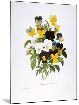 Redoute: Pansy, 1833-Pierre-Joseph Redout?-Mounted Giclee Print