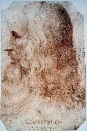 Leonardo Da Vinci-Leonardo da Vinci-Stretched Canvas Print