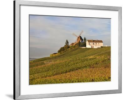 Windmill and Vineyards, Verzenay, Champagne Ardenne, Marne, France-Walter Bibikow-Framed Photographic Print