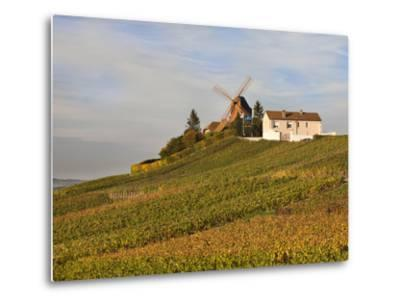 Windmill and Vineyards, Verzenay, Champagne Ardenne, Marne, France-Walter Bibikow-Metal Print