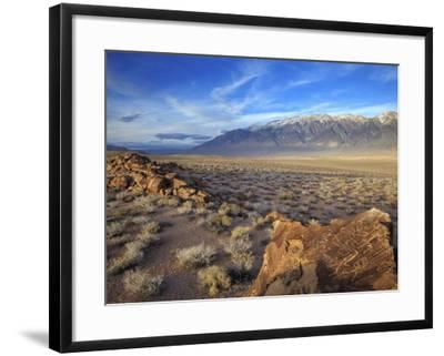 Great Basin Curvilinear Abstract-Style Petroglyphs, Bishop, California, Usa-Dennis Flaherty-Framed Photographic Print