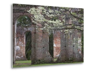 Ruins in the Spring of Old Sheldon Church, South Carolina, Usa-Joanne Wells-Metal Print