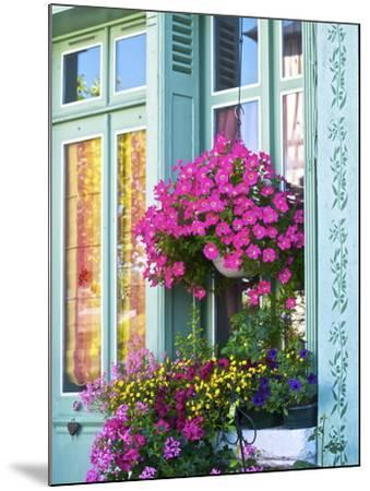Window With Flowers, France, Europe-Guy Thouvenin-Mounted Photographic Print