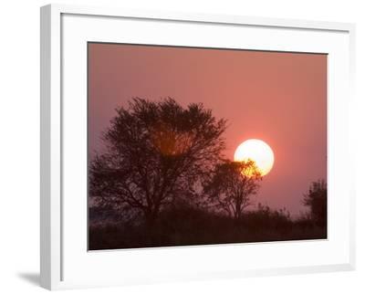 Sunrise, Busanga Plains, Kafue National Park, Zambia, Africa-Sergio Pitamitz-Framed Photographic Print