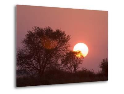 Sunrise, Busanga Plains, Kafue National Park, Zambia, Africa-Sergio Pitamitz-Metal Print