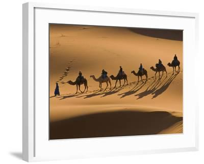 Camels in the Dunes, Merzouga, Morocco, North Africa, Africa-Michael Runkel-Framed Photographic Print