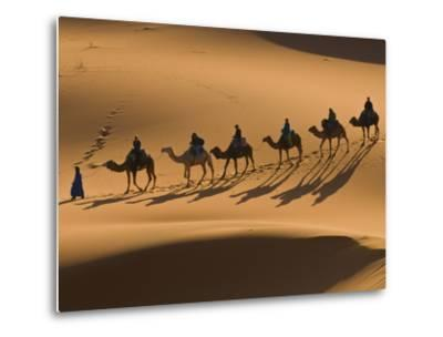 Camels in the Dunes, Merzouga, Morocco, North Africa, Africa-Michael Runkel-Metal Print