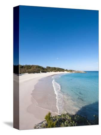Horseshoe Bay Beach, Bermuda, Central America-Michael DeFreitas-Stretched Canvas Print