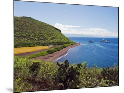 Galapagos Islands, UNESCO World Heritage Site, Ecuador, South America-Christian Kober-Mounted Photographic Print