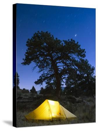 Tent Illuminated Under the Night Sky, Rocky Mountain National Park, Colorado, USA-Christian Kober-Stretched Canvas Print