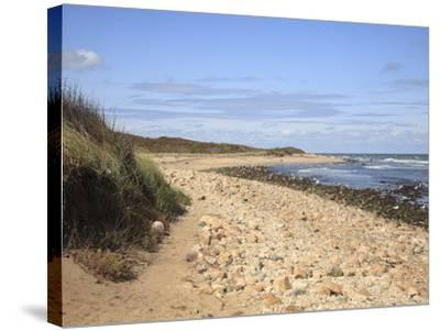 Montauk Point State Park, Montauk, Long Island, New York, United States of America, North America-Wendy Connett-Stretched Canvas Print