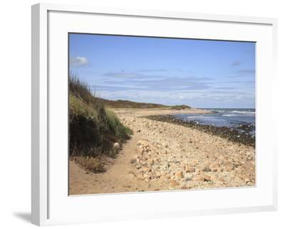 Montauk Point State Park, Montauk, Long Island, New York, United States of America, North America-Wendy Connett-Framed Photographic Print