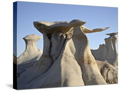 Bisti Wing, Bisti Wilderness, New Mexico, United States of America, North America-James Hager-Stretched Canvas Print